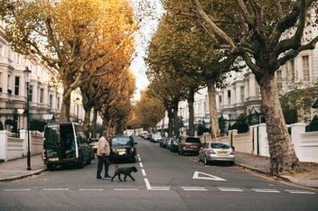 Man walking a dog outside